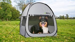 GigaTent Pop Up Dog Tent Reviews