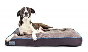 First-Quality Orthopedic Dog Bed